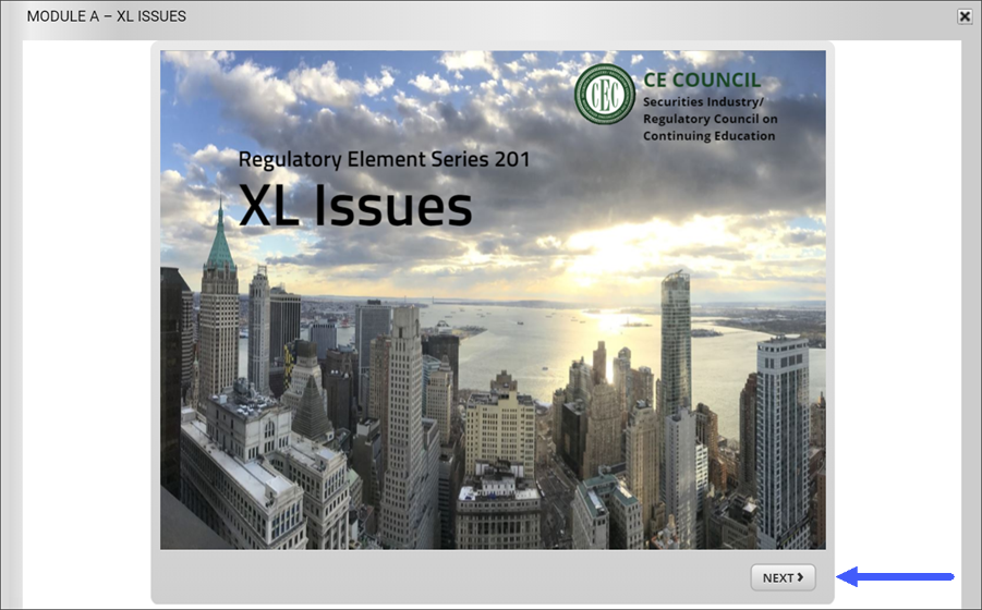 CE in FinPro -XL Issues Start page
