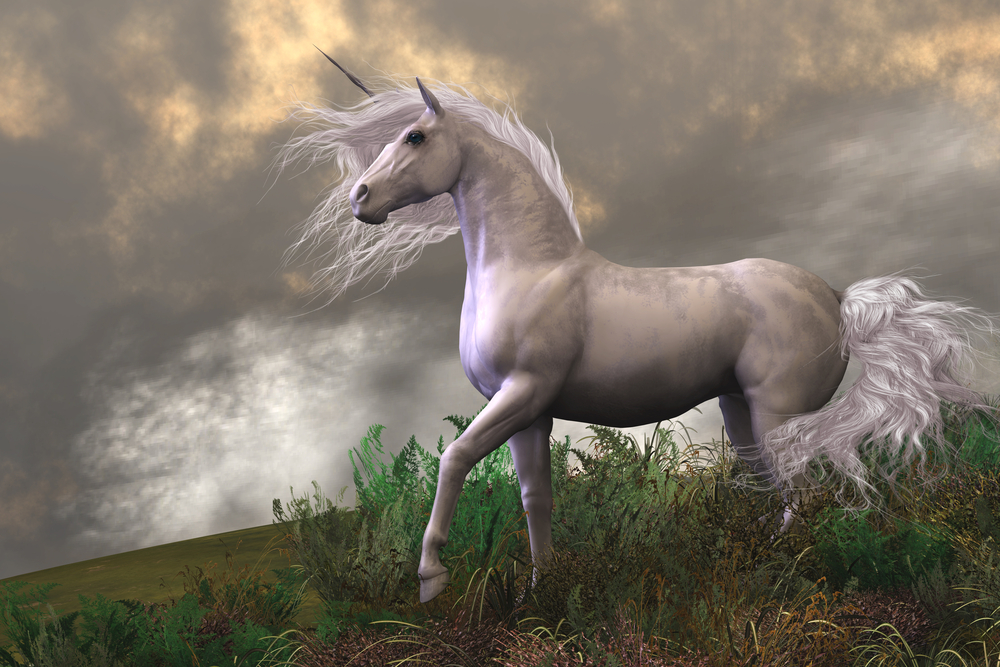 From Myth to Market: Understanding Unicorn Companies | FINRA.org